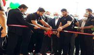 کمپ تیمهای ملی کشتی با حضور وزیر ورزش و جوانان افتتاح شد