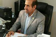 مدیرعامل شاهین بوشهر: موافقت ضمنی با پاشازاده برای فصل جدید انجام شده است